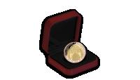 Kazeta na Vaše mince nebo medaile - ukázka použití