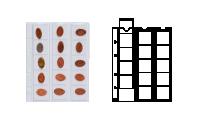 Mincovní obal Optima pro 15 mincí do Ø 42 mm