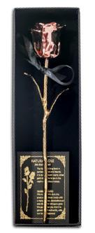 Pravá čajová růže zdobená růžovým a žlutým ryzím zlatem