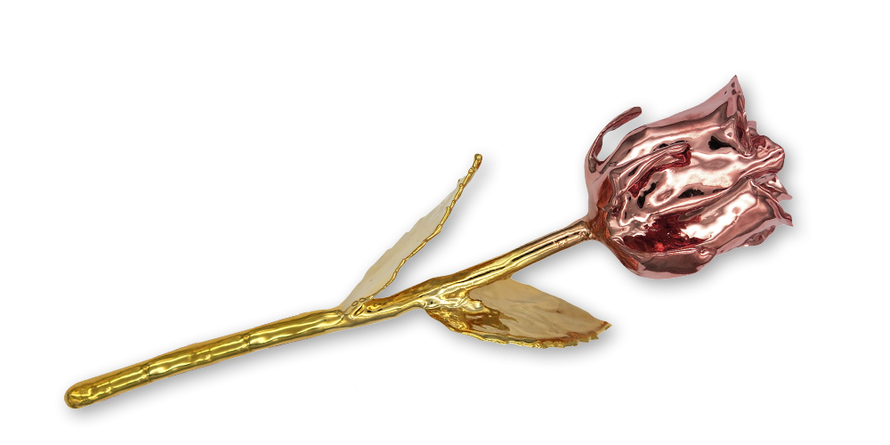 Pravá čajová růže zušlechtěná ryzím zlatem