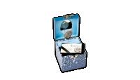 Box s hracím strojkem, který po otevření přehraje melodii